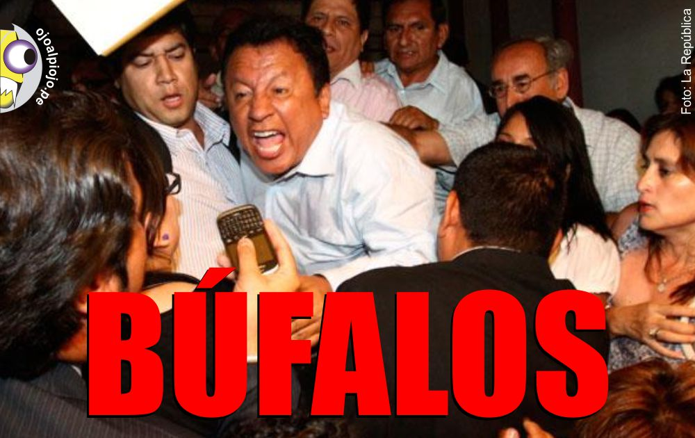 Ojo al Piojo - Búfalos