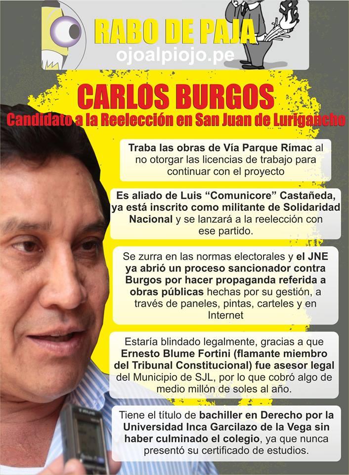 burgos info correct