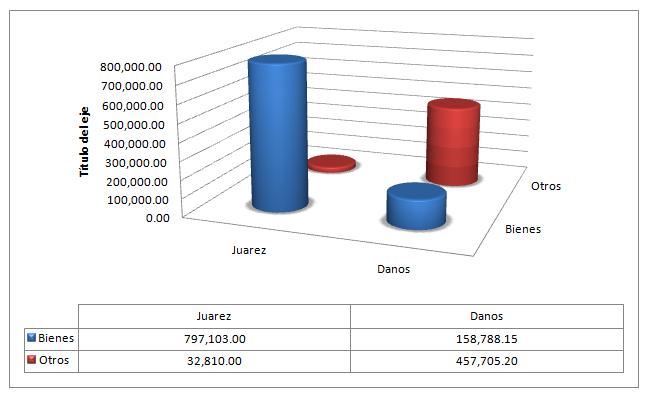 Ojo al Piojo - Patricia Juárez - Declaración Jurada