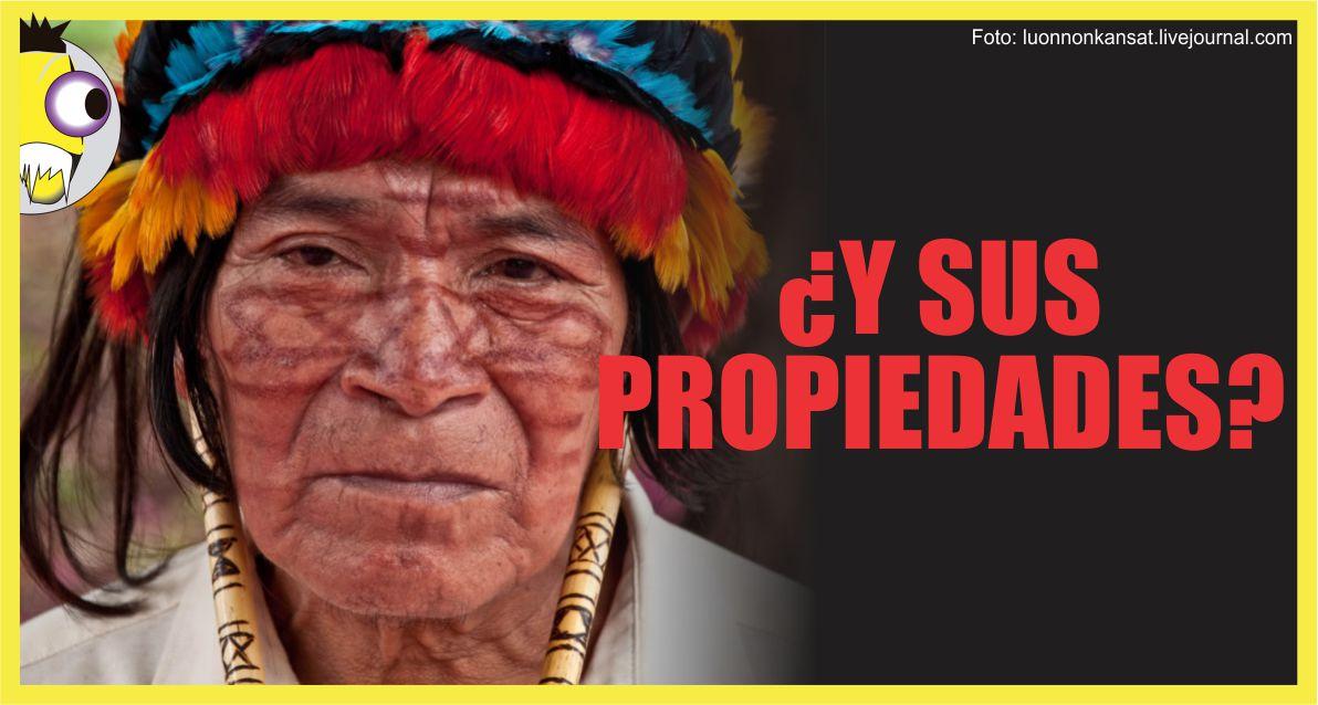 Ojo al Piojo - Propiedades Nativas