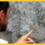 Descubren pinturas rupestres en Parque Arqueológico Macchu Picchu