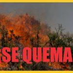 Ojo al Piojo - Incendios en Perú